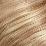 24B22 light golden blonde & light ash blonde blend